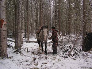 Зимний конный поход. Возле избы.