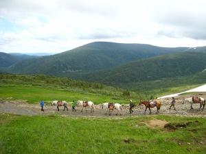 Расписание туров на Кузнецкий Алатау